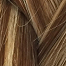 RH : N°10 Blond naturel doré / Majirel : N°7.03